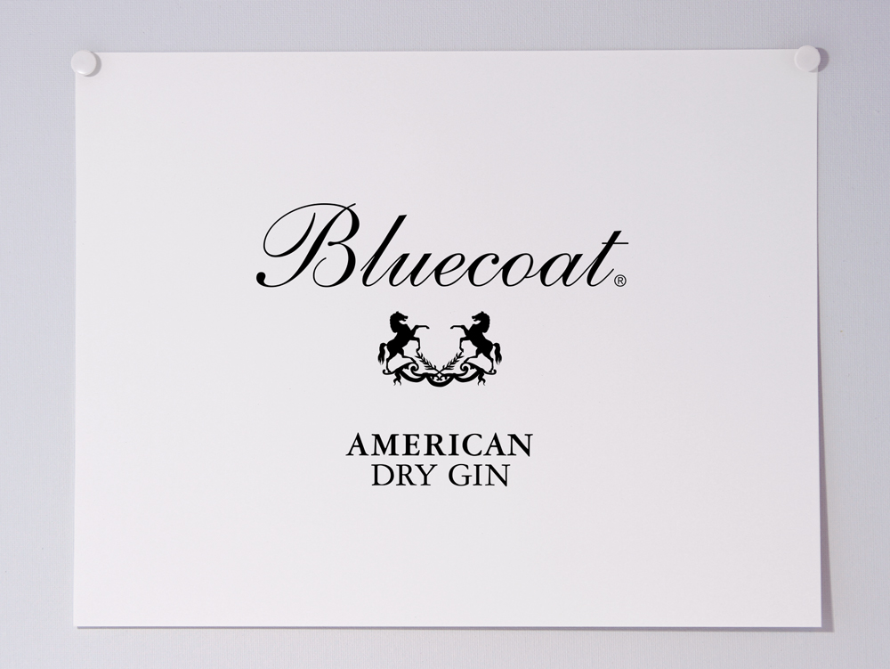 Bluecoat_LOGO-PAGE_WEBID26_1000